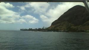 西海岸。スピナーイルカがたくさん。